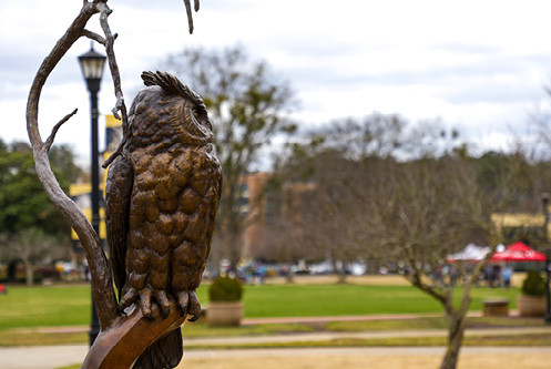 Owl statue on the Kennesaw Campus